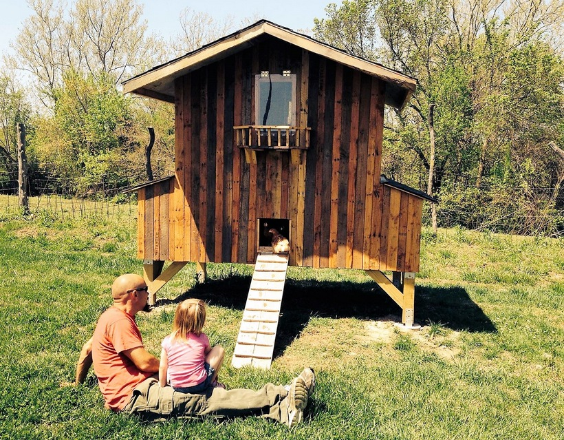 chicken-coop-made-from-pallet-wood