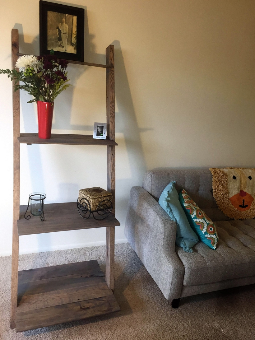 pallet-wood-ladder-shelves