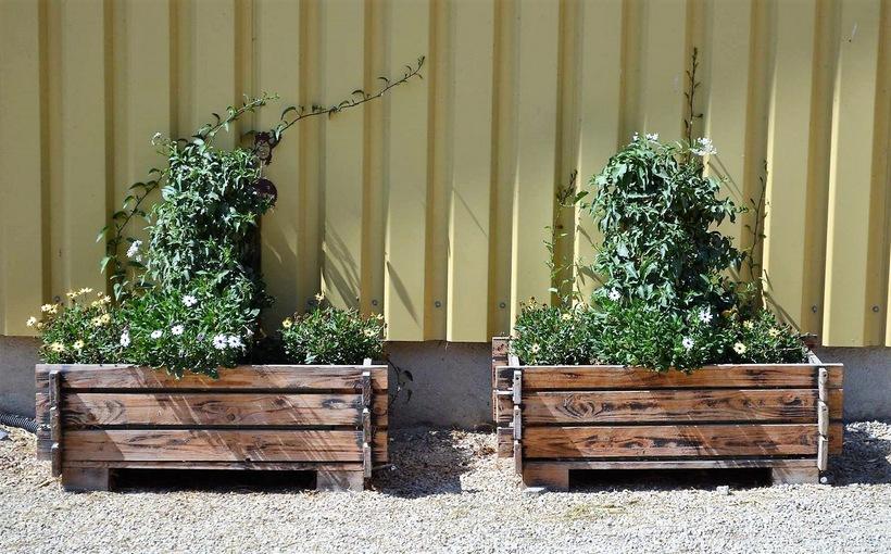 wooden-pallet-planter