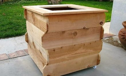 Really Functional Creations with Wood Pallets