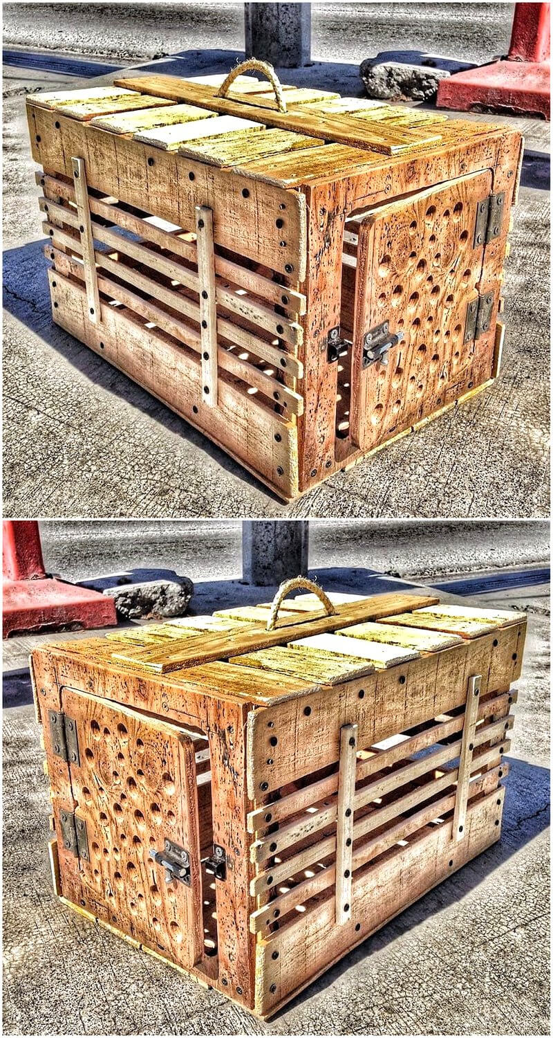 pallets made cat cage