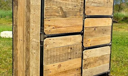 Multipurpose Reclaimed Pallets Shelving Cabinet