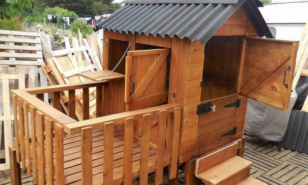 Pallets Wooden Made Kids Play Cabin