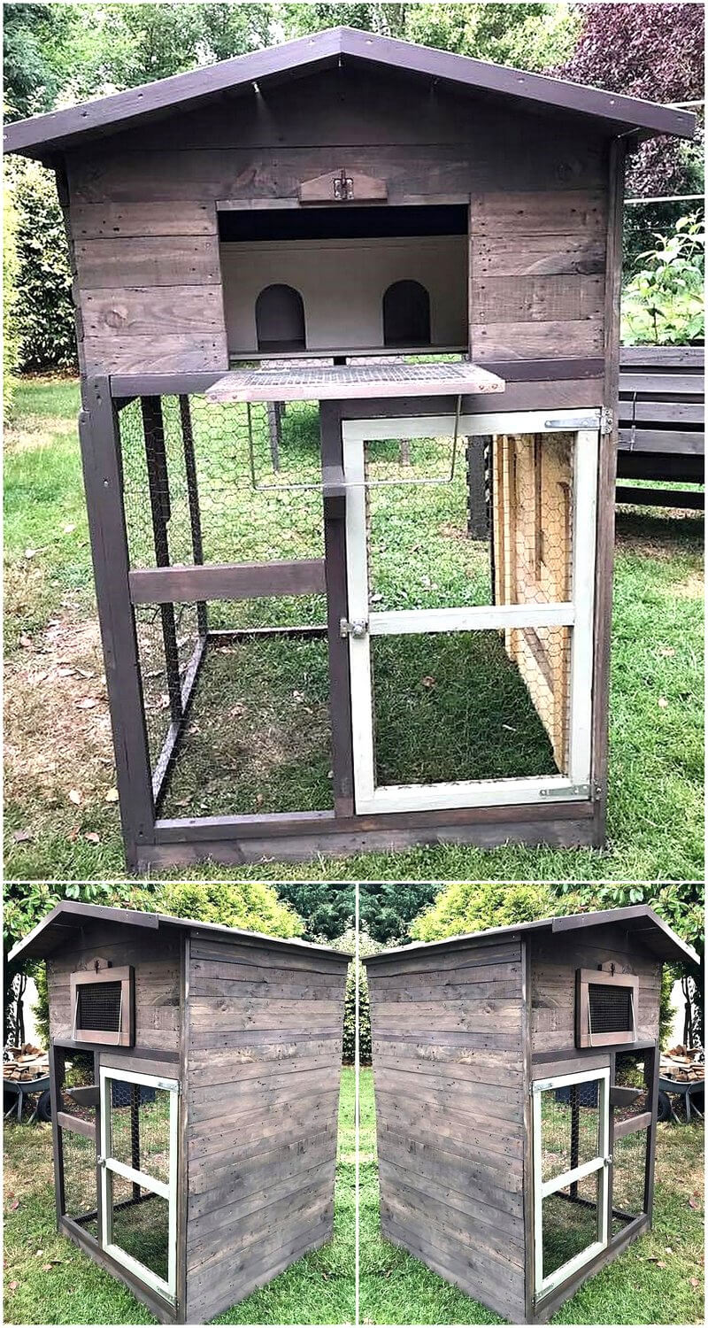 wood pallets cage for pigeons