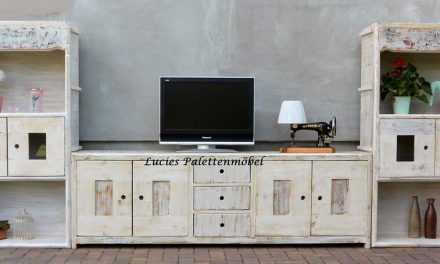 Wood Pallets Cupboard with Different Flexible Variants