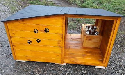 Reclaimed Pallets Wood Dog House