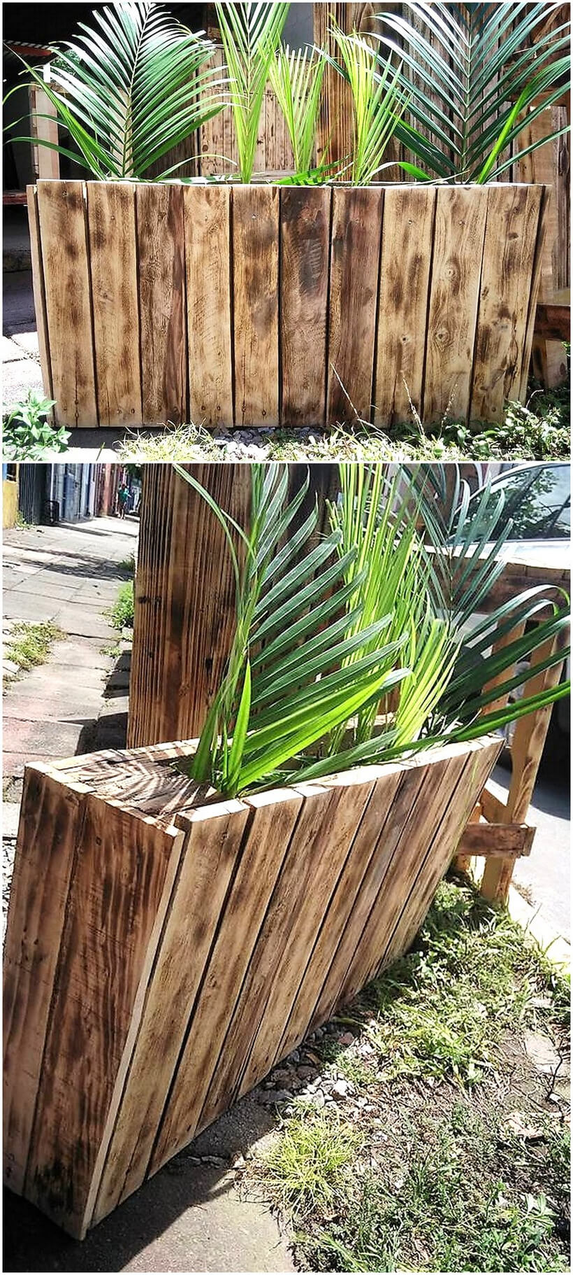 reused pallet planter