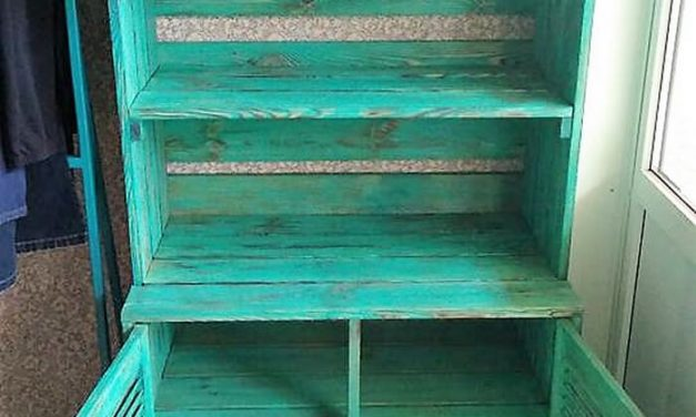 Recycled Pallets Rustic Look Wardrobe Idea