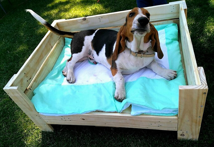diy pallets wood dog bed