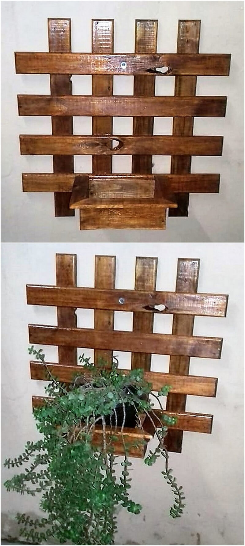 pallet wall planters designs 3