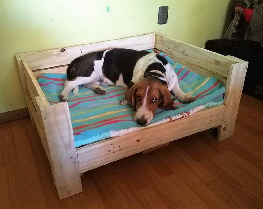 pallets wooden dog bed diy