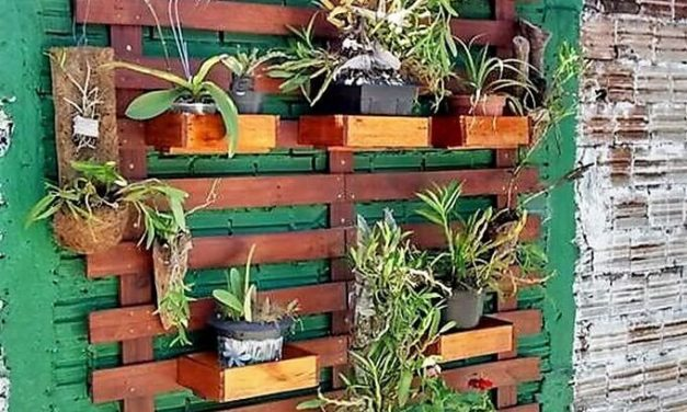Wood Pallet Vertical Wall Planter