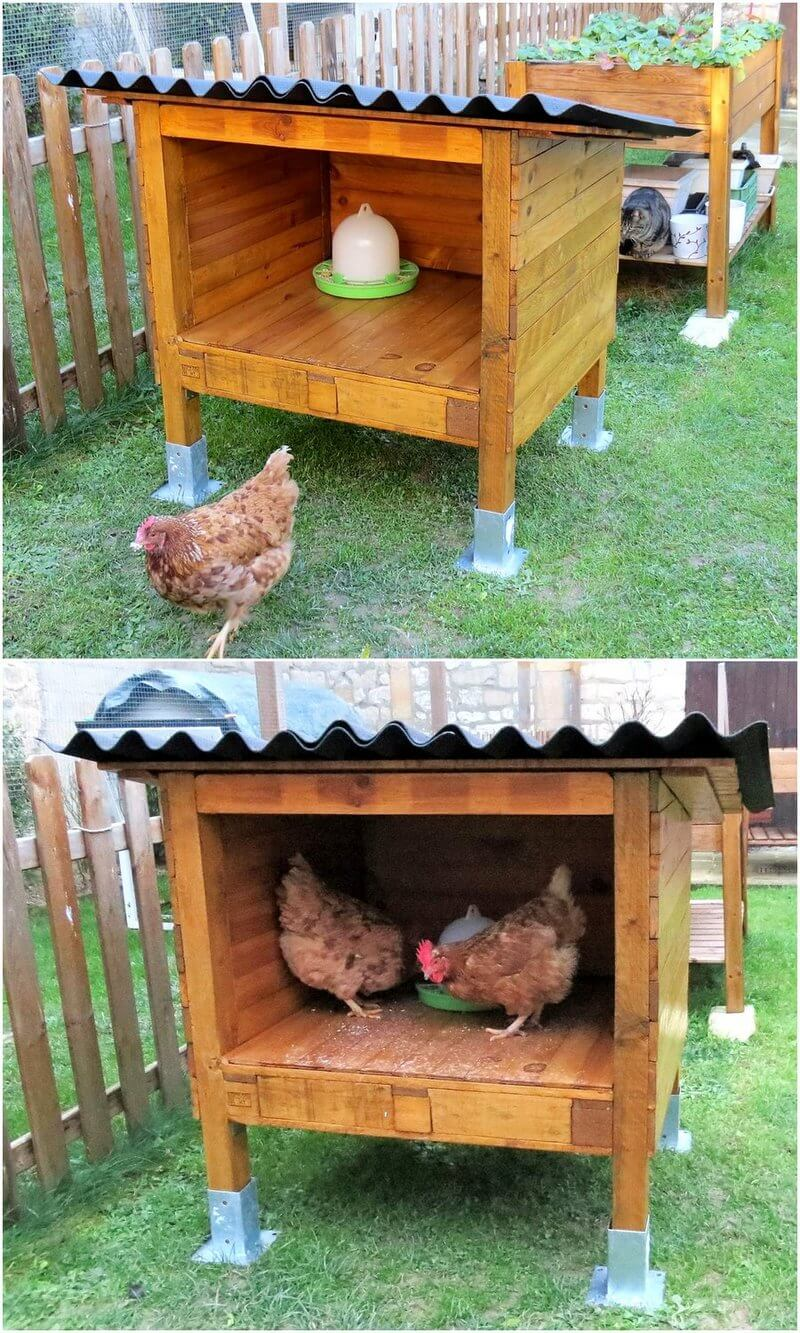 wood pallet chicken shed