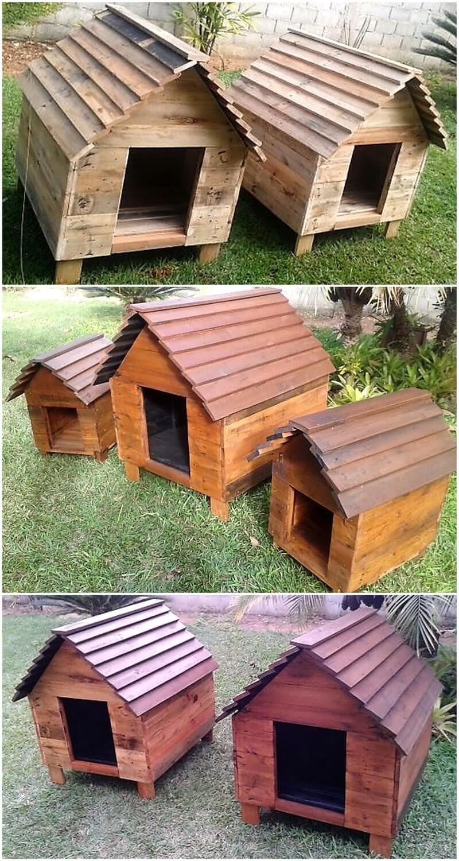 pallet dog houses
