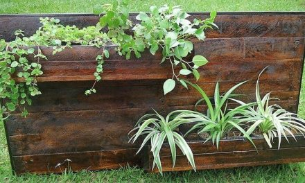 Creative Pallet Recycling DIY Ideas And Projects